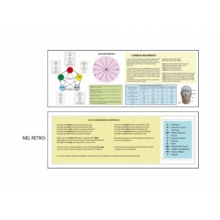Five-movements scheme
