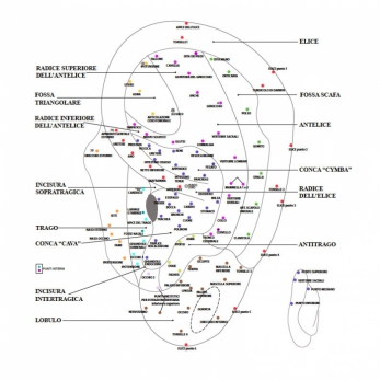 Mappa punti auricolari