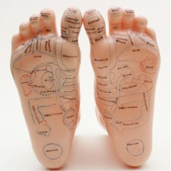 Modello piede - coppia destro e sinistro per riflessologia