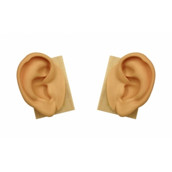 Ears in sof silicone - height cm. 15 - right and left