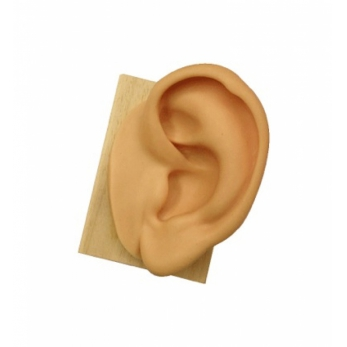 Ear in soft silicone - height cm. 15 - left