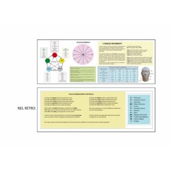 Schema dei 5 movimenti